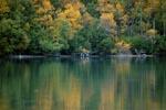 Spaetherbst am Naknek Lake