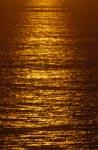Goldenes Meer Walker Bay