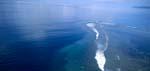 Fiji Shark Reef aus der Vogelperspektive