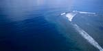 Luftbildaufnahme Shark Reef in der Beqa Lagoon auf Fiji