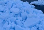 Packeis - Das Meereis der Arktis