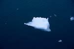 Eisscholle am Cape Anne
