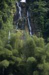 Märchenhafter Wasserfall im Regenwald