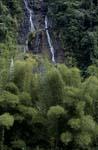 Wasserfall im Fiji Dschungel