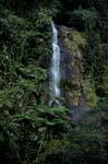 Wasserfall im dichten Fiji Regenwald