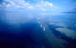 Shark Reef in der Beqa Lagoon auf Fiji aus der Luft